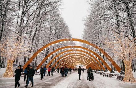 Онлайн-программа в парках Москвы с 25 по 31 января