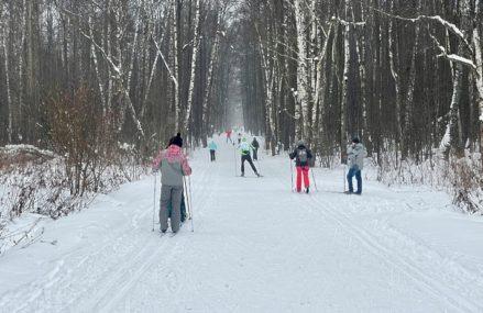Где покататься на беговых лыжах в Москве и Подмосковье в 2021 году
