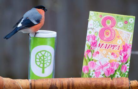Мосприрода подготовила программу мероприятий «Природа празднует Международный женский день»
