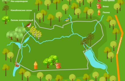 Мосприрода разработала маршрут по живописным местам Измайловского парка