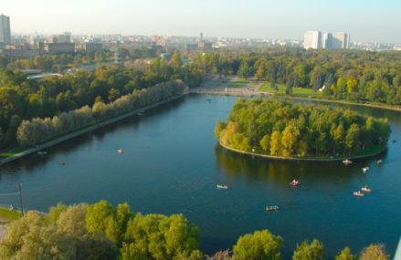 В Москве начался период размножения редких лягушек