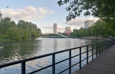 В Черкизовском пруду утонул молодой человек