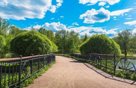 Программа в парках со 2 по 8 августа