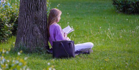 Что читать летом: в сервисе «Библиотеки Москвы» появились подборки книг для отпуска и каникул
