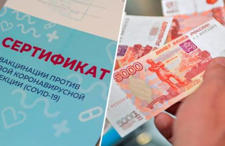 В Москве задержали торговца поддельными сертификатами о прививке от COVID-19