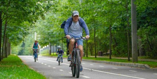 Из Москвы в Санкт‑Петербург на велосипеде: когда построят масштабную велотрассу