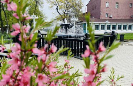 Что таит в себе название сада «Эрмитаж»?